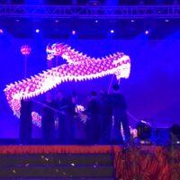 Culture:幸運を呼びこむ龍舞ドラゴンダンス伝統の技と新しさを次世代に継ぐ  [WAU No.22]